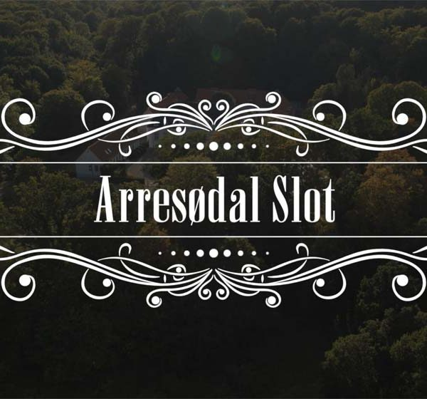 Arresoedal_slot_drone-video
